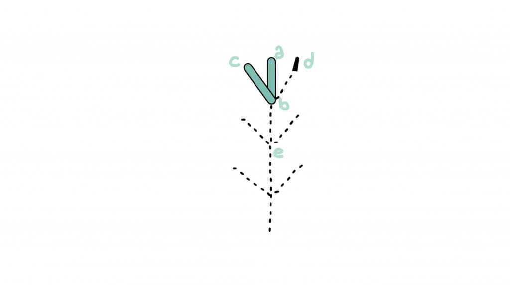 5 6 1024x572 - Fern stitch
