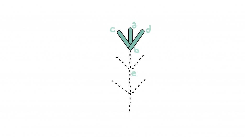 6 5 1024x572 - Fern stitch